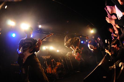 120107_kamome_02.jpg