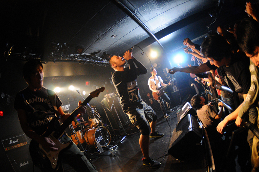 120107_kamome_04.jpg